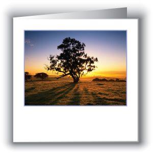 Australian Scenic Cards